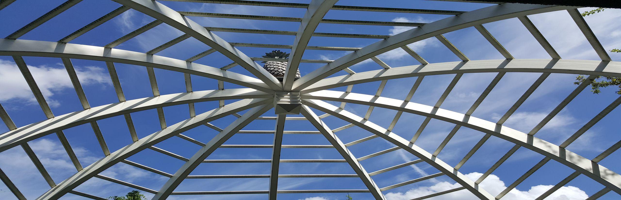 Freie Trauung - Blick in den Himmel - Christian G. Binder